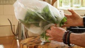 How to make your basil last longer